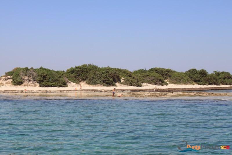 Palude del Conte e Duna Costiera, una Riserva Naturale da visitare fra Porto Cesareo e Punta Prosciutto
