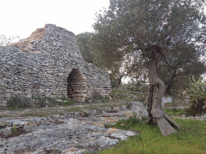 Itinerario naturalistico del basso Salento, fra Specchia, Alessano e Presicce