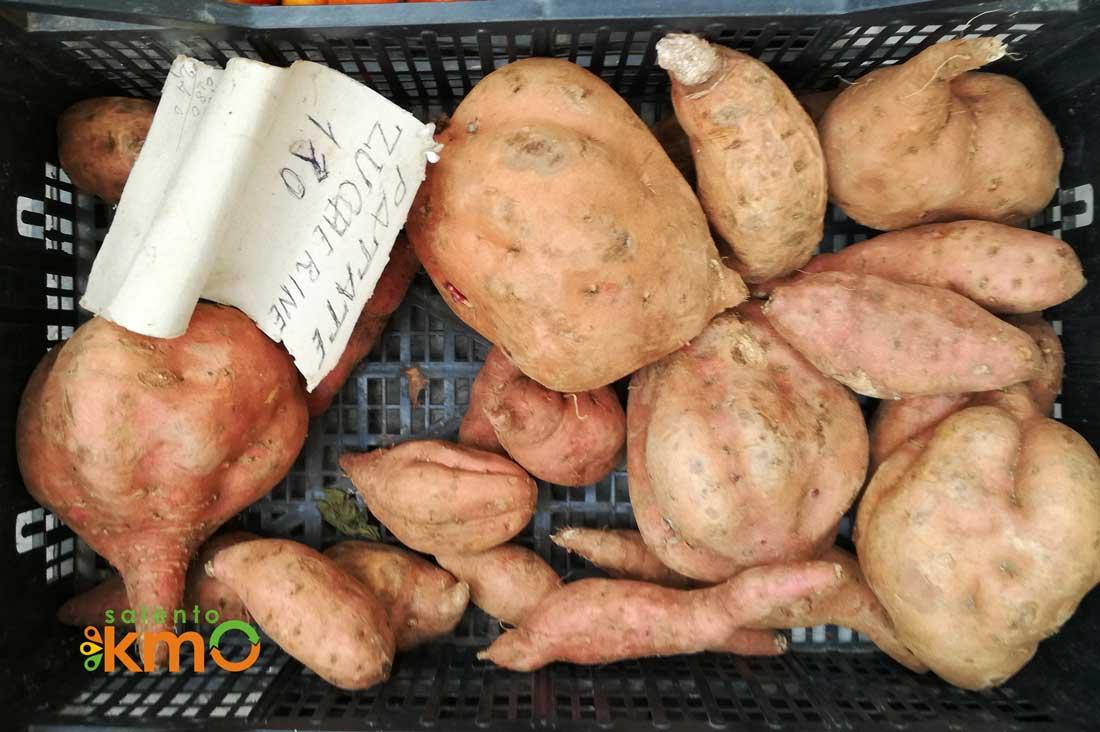La patata zuccherina o Batata di Calimera